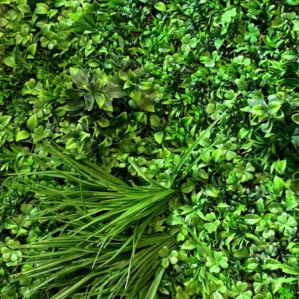 distinctive-greenwalls-foliage-options-tropical