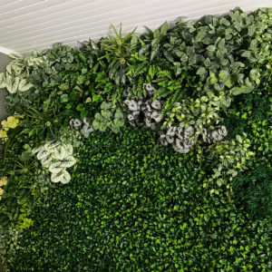 distinctive-instagreen-greenwalls-with-silk-planting-002