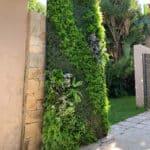 distinctive-instagreen-greenwalls-with-silk-planting-003