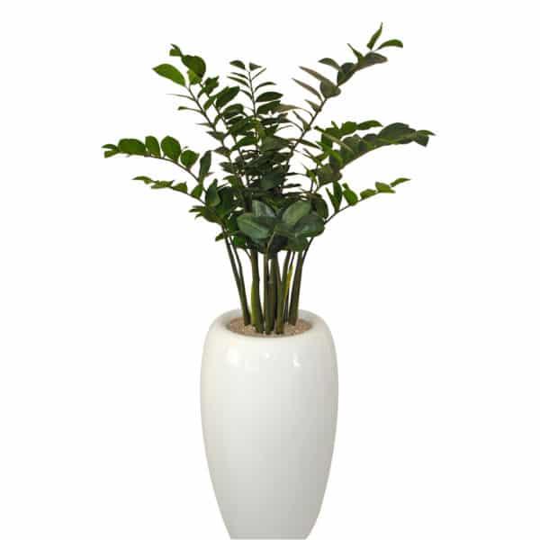 distinctive-pots-fibreglass-002