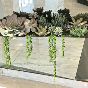 distinctive-silks-small-plants-succulents-003
