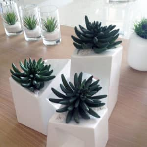 distinctive-silks-small-plants-succulents-004