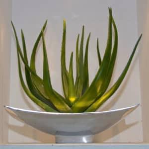 distinctive-silks-small-plants-succulents-005