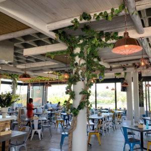 distinctive-vertical-gardens-hanging-plants-007