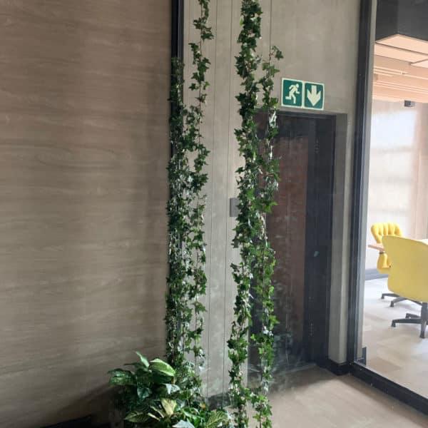 distinctive-vertical-gardens-hanging-plants-012