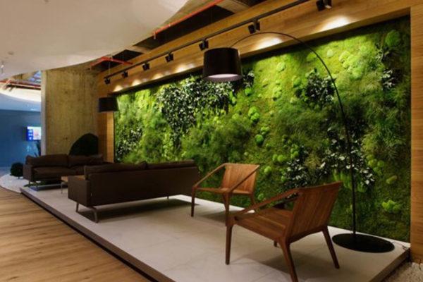 vert-gardens-preserved-moss