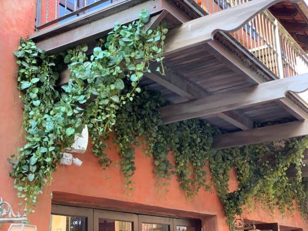 Distinctive-silks-hanging-small-plants-001