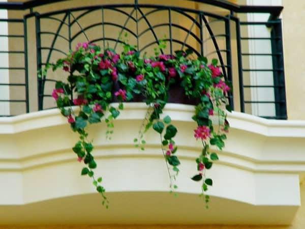 Distinctive-silks-hanging-small-plants-014