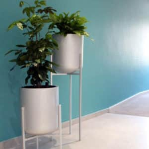 distinctive-designer-pots-010