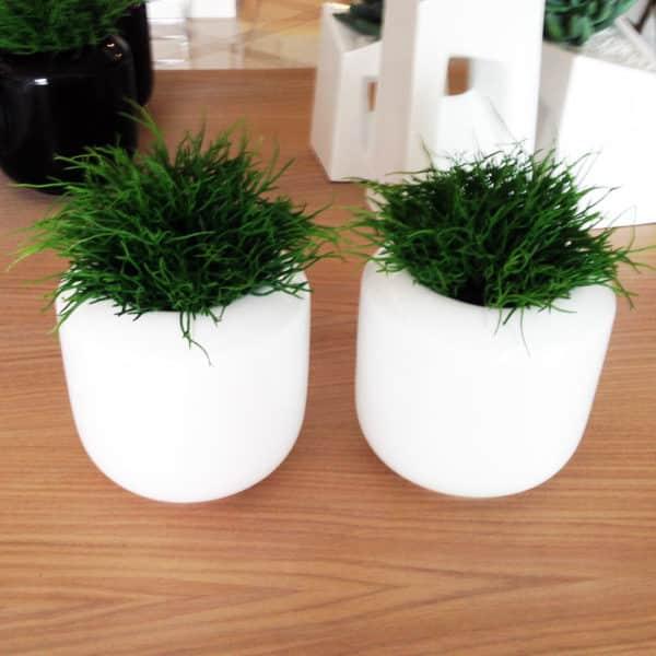 distinctive-pots-desktop-005