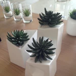 distinctive-pots-desktop-006