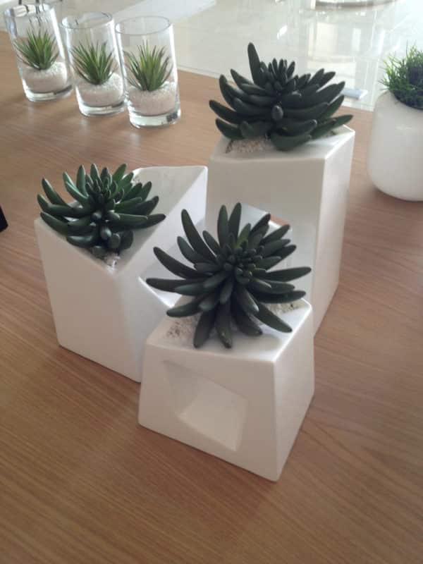 distinctive-silks-desktop-plants-004