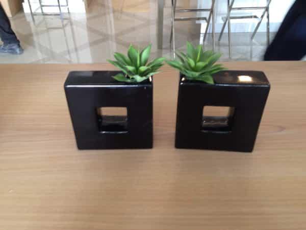 distinctive-silks-desktop-plants-006