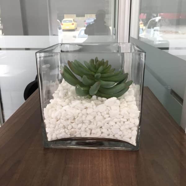 distinctive-silks-desktop-plants-011