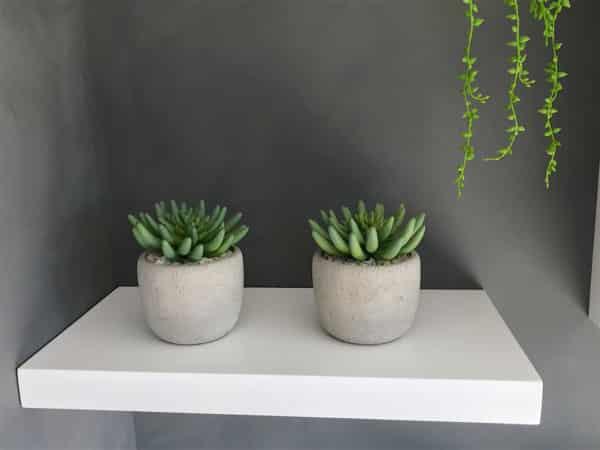 distinctive-silks-desktop-plants-015