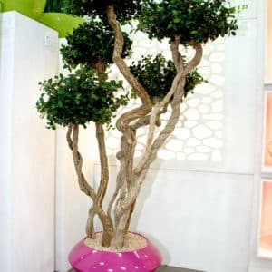 distinctive-silks-structured-trees-009