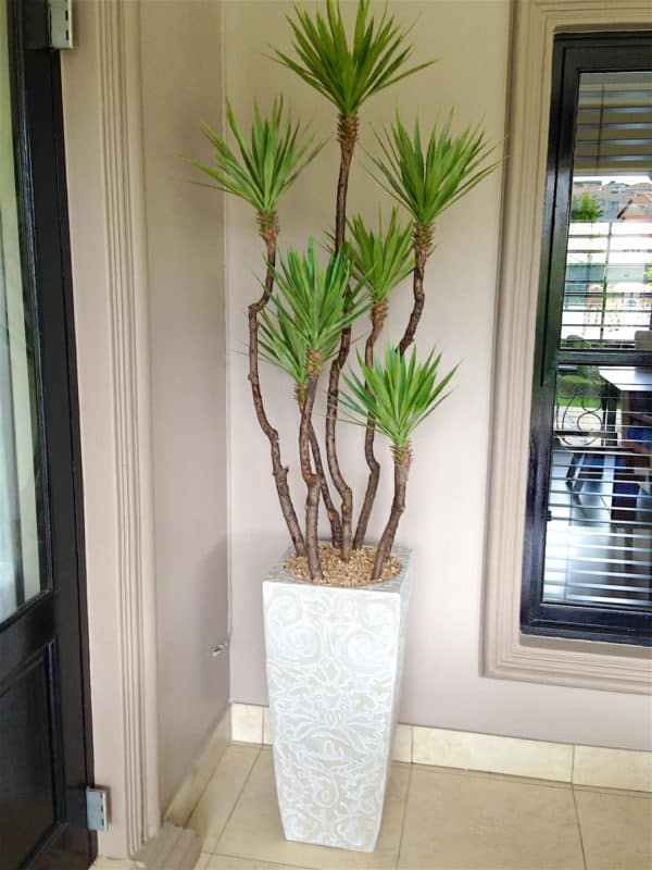 distinctive-silks-structured-trees-013