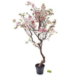 flowering-trees-010