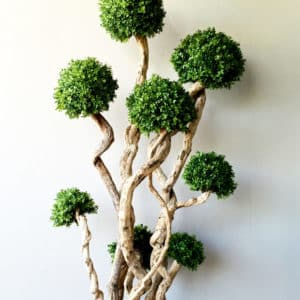 topiaries-trees-006
