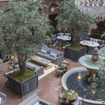 distinctive-silks-large-trees-olive-tree-007